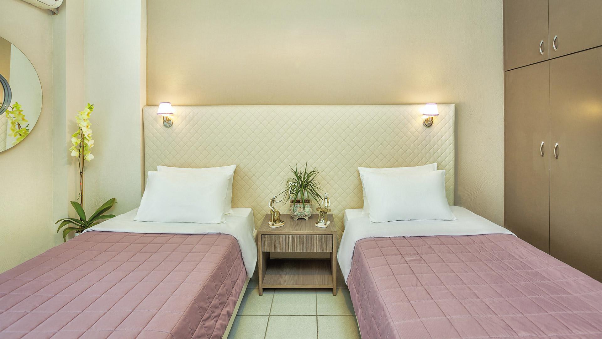 Δίκλινο Economy - 2 μονά κρεβάτια με θέα κήπο
